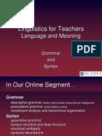 Online Syntax and Pedagogical Grammar