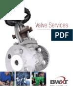 e201 1005 Valve Services
