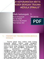 PPT Cedera Medula Spinalis