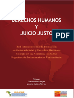 (i) NASH, Claudio-La protección internacional de los derechos humanos (2).pdf