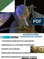 presentacion-dengue.pptx