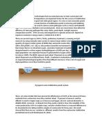 Stabilization ponds.docx