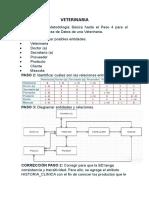 VETERINARIA-Modelo BD.docx