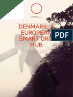 Smart Grid Rapport 2011