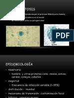 2_Blastocystocis CORREGIDO.pdf