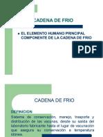 elementos de cadena de frio.pdf
