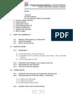 PIP RIEGO AÑAYLLA.docx