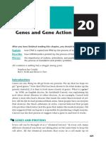 Biology - Genes
