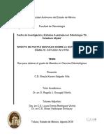 TESIS DE MAESTRIA SHEYLA SALGADO 2016.pdf