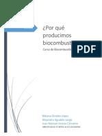 Por Qué Producimos Biocombustibles