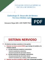 Sistema nervioso_médula espinal_resumen clases_Dr Rojas.pdf