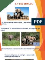 El Elefante y Los Brincos