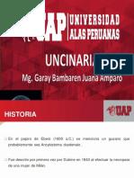 4.Uncinaria