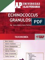 4.Echinococcus Granulosus