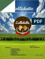 Rapport Lollidatte.docx