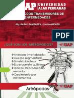 Artropodos(1)