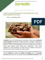 Como Plantar Gengibre e Ter Sempre Em Casa Esse Remédio Natural - GreenMe.com.Br