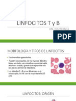 Clase 3 Linfocito B y T SEMANA 3
