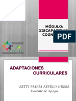 ADAPTACIONES_CURRICULARES_-