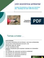 c.castiblanco.valoracion.pdf