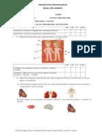 Prueba Diagnostica PREKINDER 2013