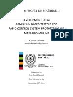 BLACKlink_Manual_RDK_rev2.pdf