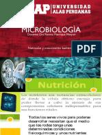 4. Nutricion y Crecimiento Bacteriano