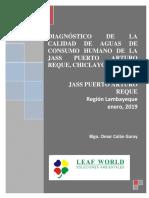 Informe Agua Potable Reque 2019 (1)
