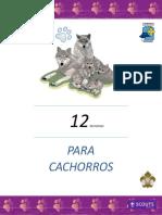 12-REUNIONES-final.-1.pdf