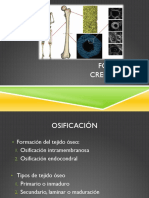 Crecimiento oseo.pdf