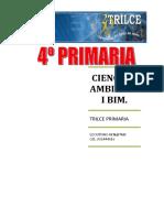 C.A. I BIM - termine