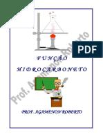 funcao_hidrocaborneto questoes.pdf