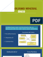 Metabolismo Mineral Oseo