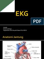 EKG Workshop Holistik
