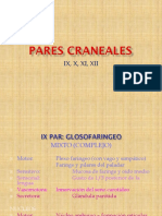 Pares Craneanos IX, X, XI, XII