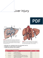 Liver Injury