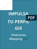 Impulsa Tu Perfil GIS - Vitaminas