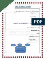 Java Polymorphism.docx