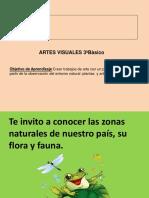 Flora y Fauna Zonas de Chile 3