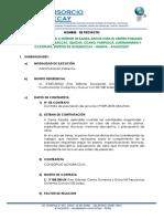 Memoria Descriptica Enero-2019 Uchuraccay11111.docx