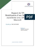 TP_ANSYs.pdf