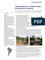 Practica Profesional Ecopetrol - Rioceibas