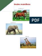 Animales mamíferos.docx