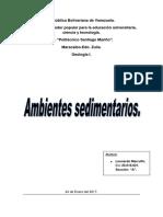 Ambientes sedimentarios.pdf