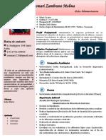 C.V. ACTUAL YUSMARY.pdf