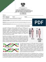 Actividad Bloque II Mutaciones Biologia II