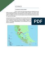 Campaña OCEANOS.pdf