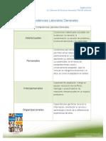 guía-de-competencias-laborales.pdf