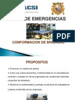 Apoyo Academico Cacsi 2010 Conformacion de Brigadas
