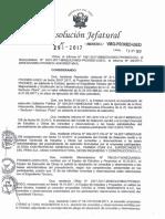 Resolución De Jefatura.
